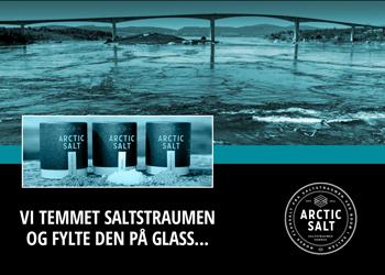 Arctic Salt - I Fokus