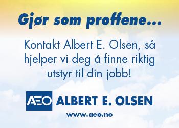 Albert E Olsen